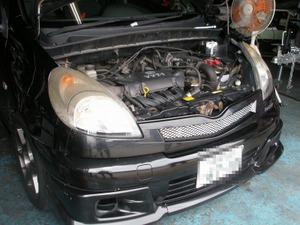 Sp6040017